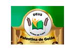 Câmara de Palestina de Goiás